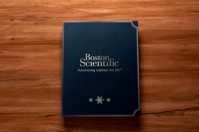 Boston Scientific Europe Seasonal Communication Animation Book Still